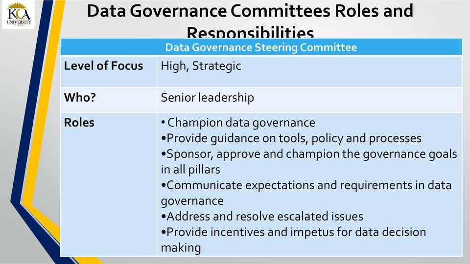Roles Senior leadership Champion data governance Provide guidance on tools, policy and processes Sponsor,