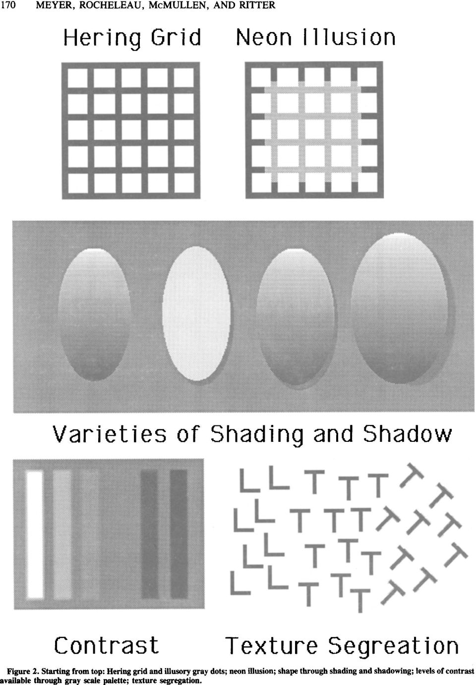 Starting from top: Hering grid and illusory gray dots; neon illusion; shape through