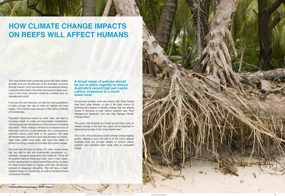 Factors that should increase the resilience of reefs include ensuring that water quality on reefs is as high as possible with low nutrient, pollutant and sediment levels.