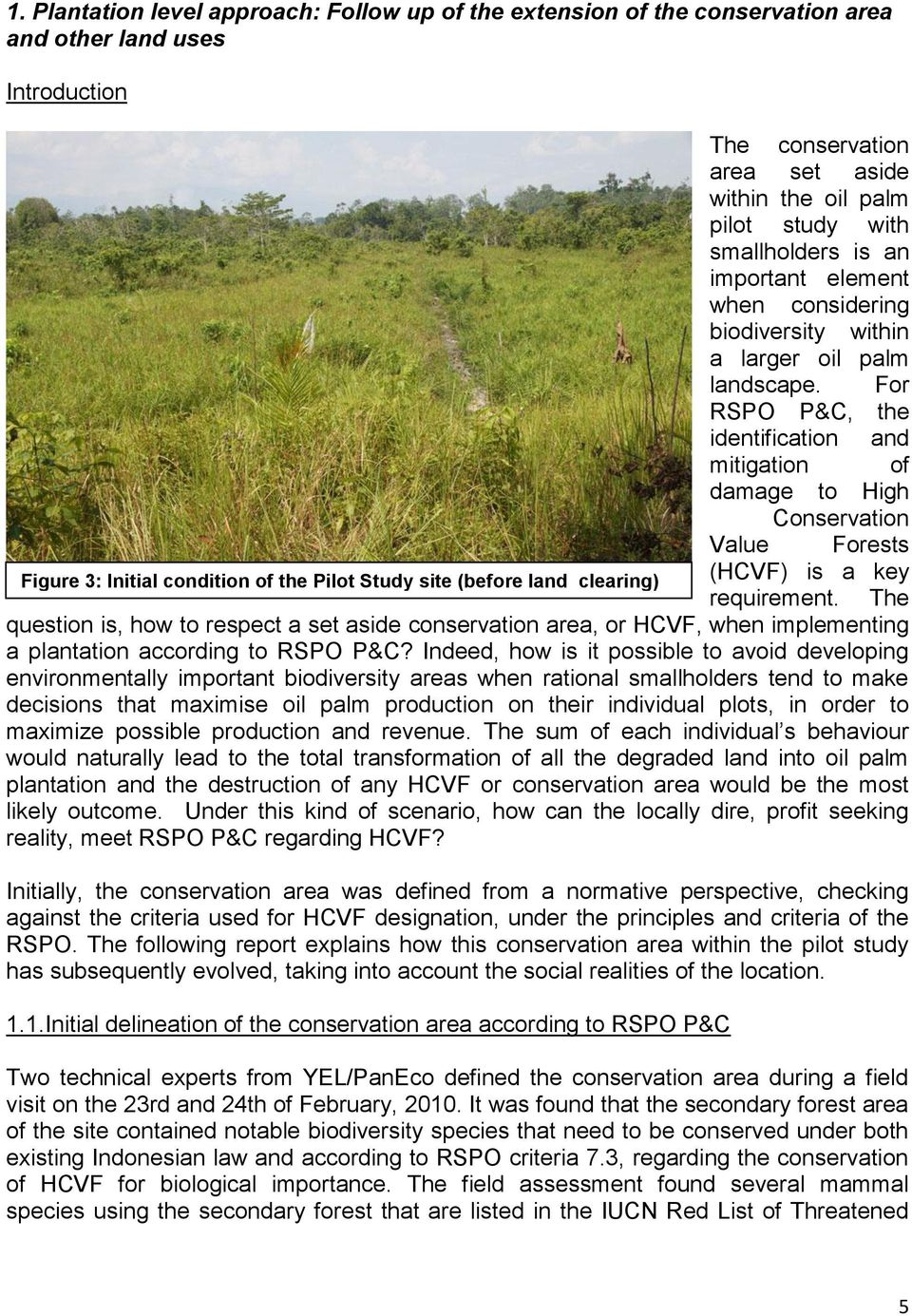 For RSPO P&C, the identification and mitigation of damage to High Conservation Value Forests Figure 3: Initial condition of the Pilot Study site (before land clearing) (HCVF) is a key requirement.