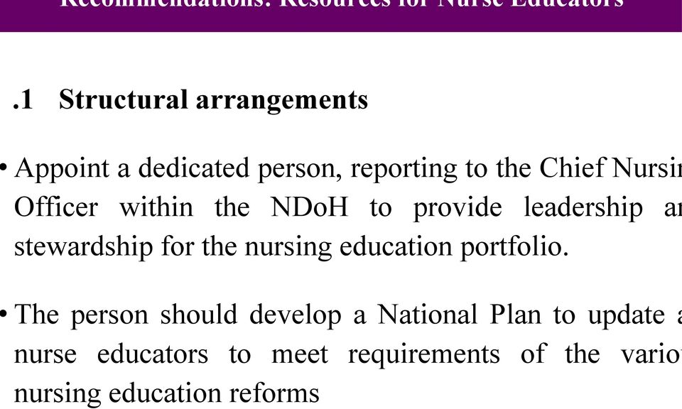 Officer within the NDoH to provide leadership an stewardship for the nursing education
