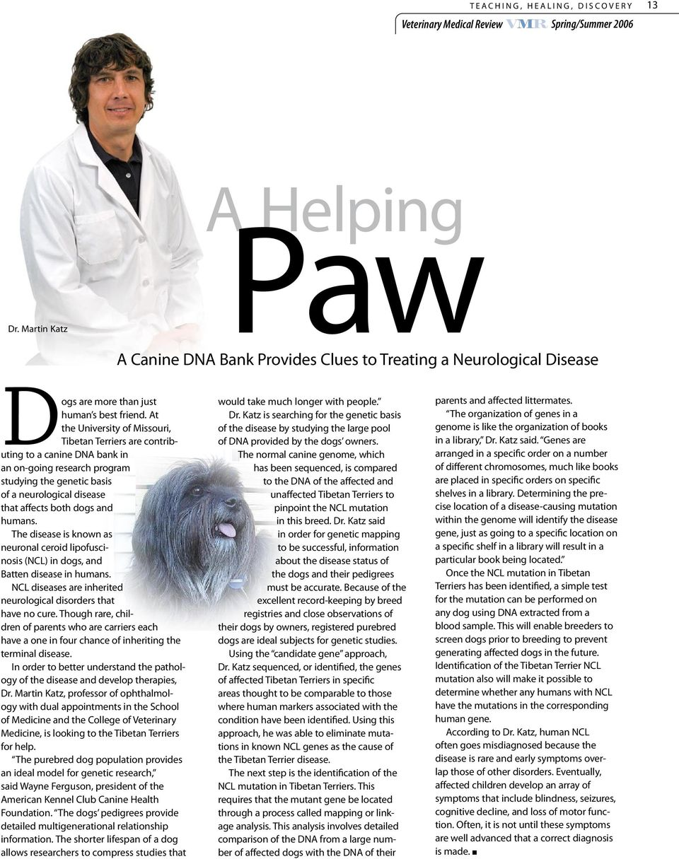 At the University of Missouri, Tibetan Terriers are contributing to a canine DNA bank in an on-going research program studying the genetic basis of a neurological disease that affects both dogs and