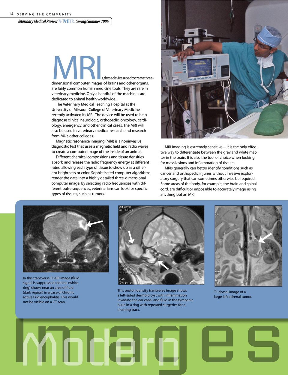 The Veterinary Medical Teaching Hospital at the University of Missouri College of Veterinary Medicine recently activated its MRI.