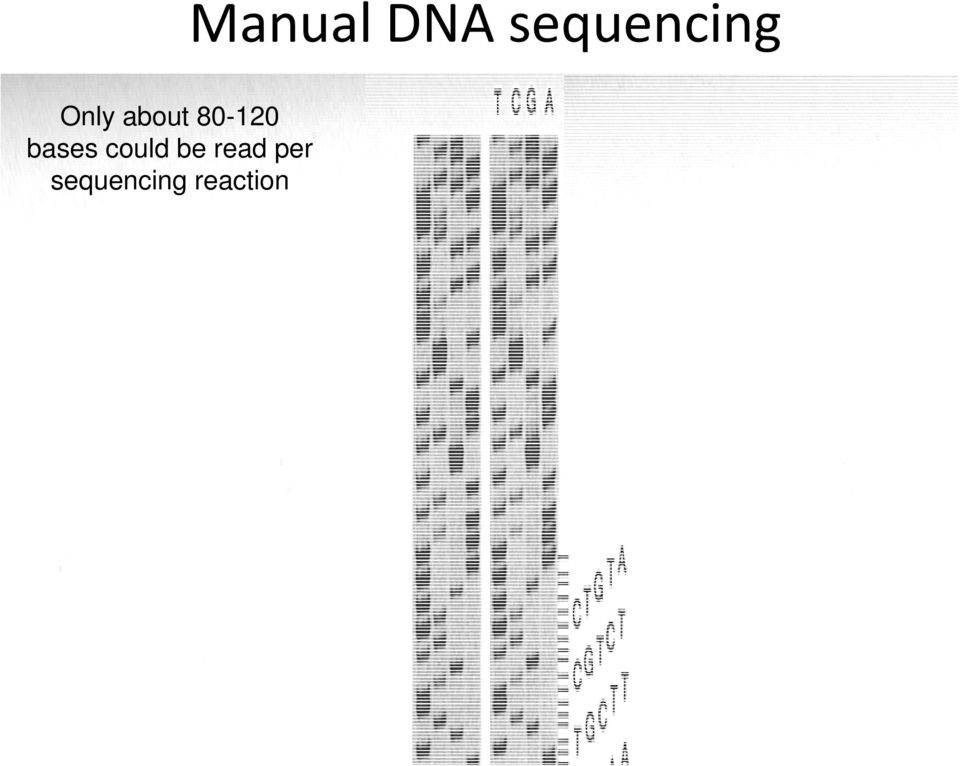 per sequencing