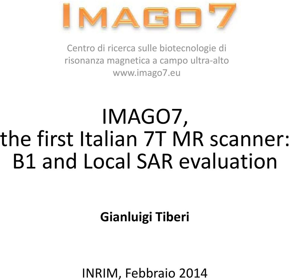 eu IMAGO7, the first Italian 7T MR scanner: B1