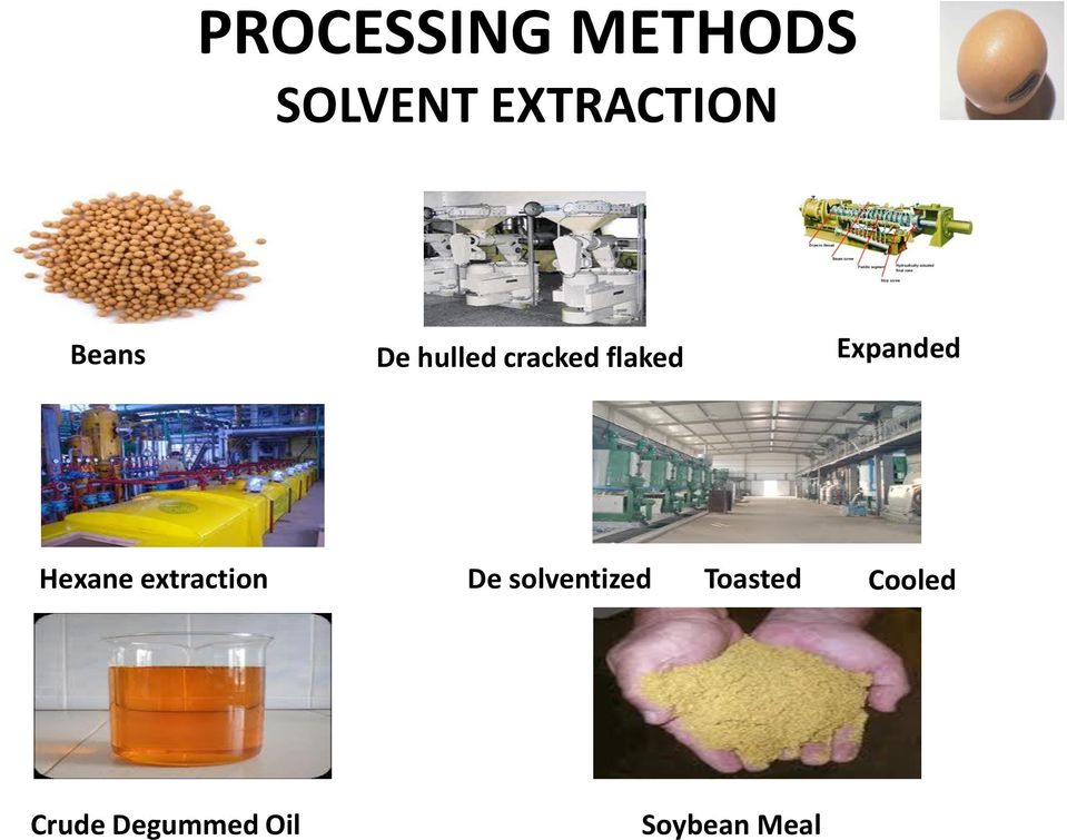 Hexane extraction De solventized