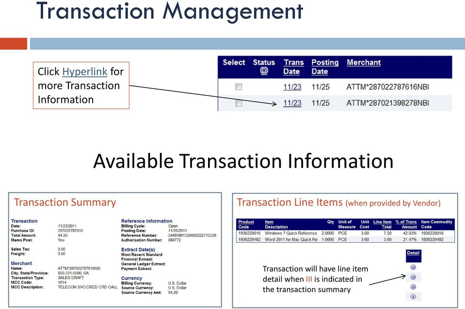 Transaction Line Items (when provided by Vendor) Transaction will
