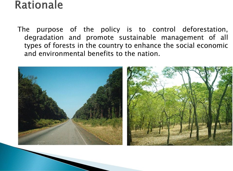 management of all types of forests in the country to