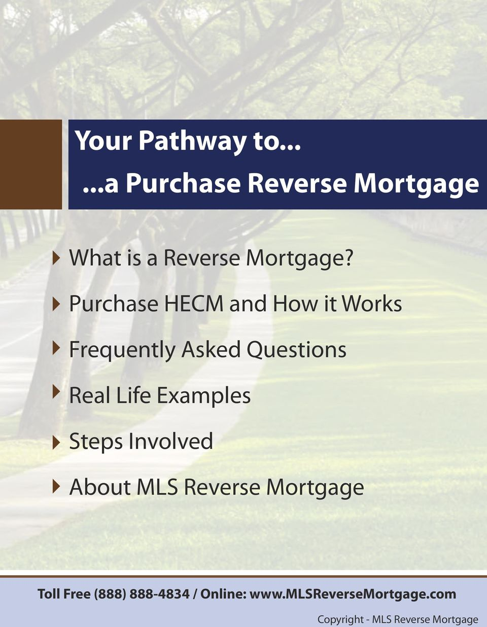 Examples Steps Involved About MLS Reverse Mortgage Toll Free (888)