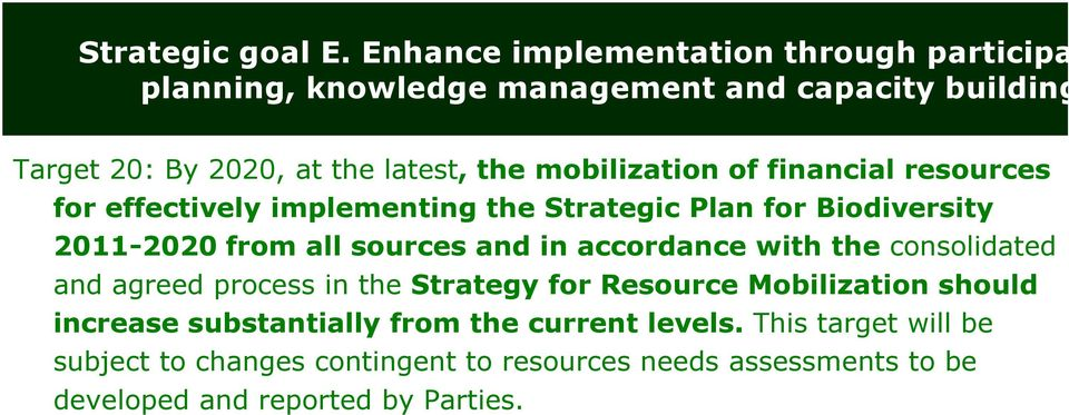 mobilization of financial resources for effectively implementing the Strategic Plan for Biodiversity 2011-2020 from all sources and in