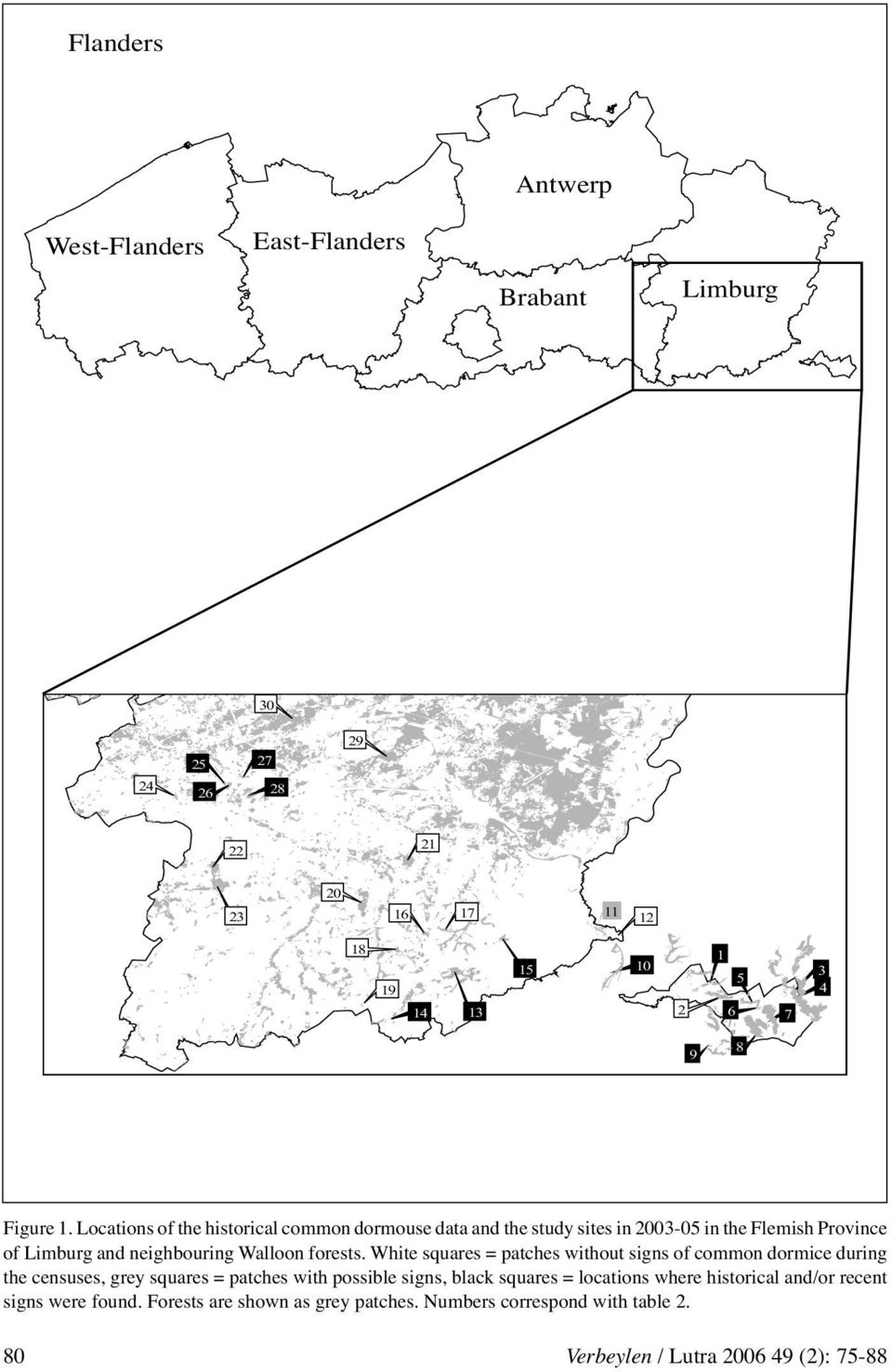 Locations of the historical common dormouse data and the study sites in 2003-05 in the Flemish Province of Limburg and neighbouring Walloon
