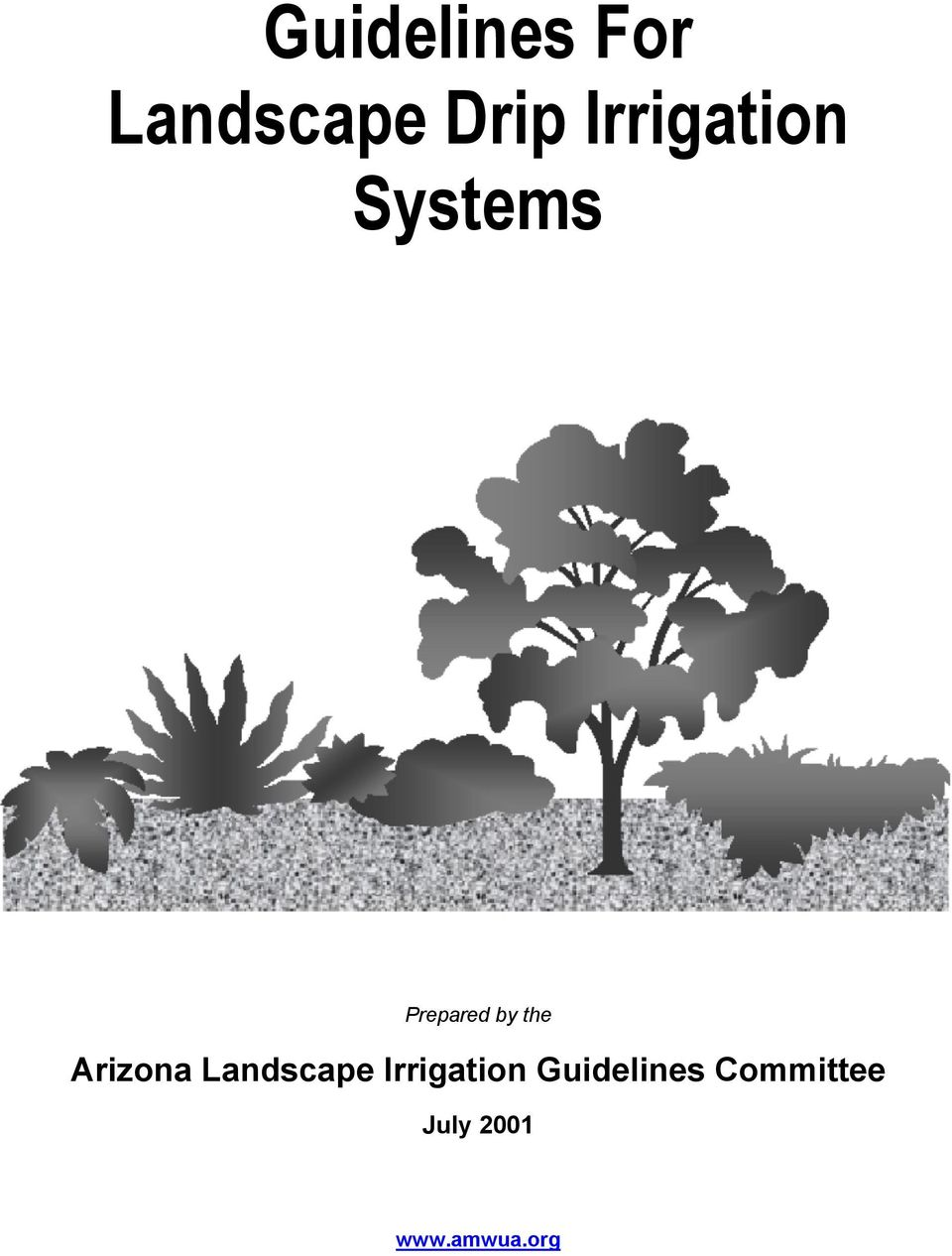 Arizona Landscape Irrigation