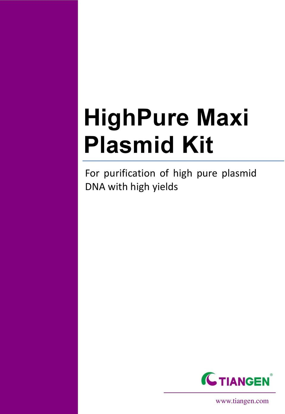 high pure plasmid DNA