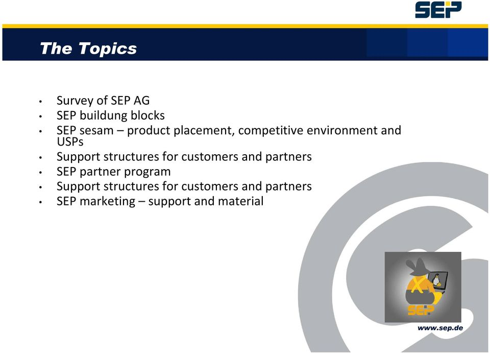 structures for customers and partners SEP partner program