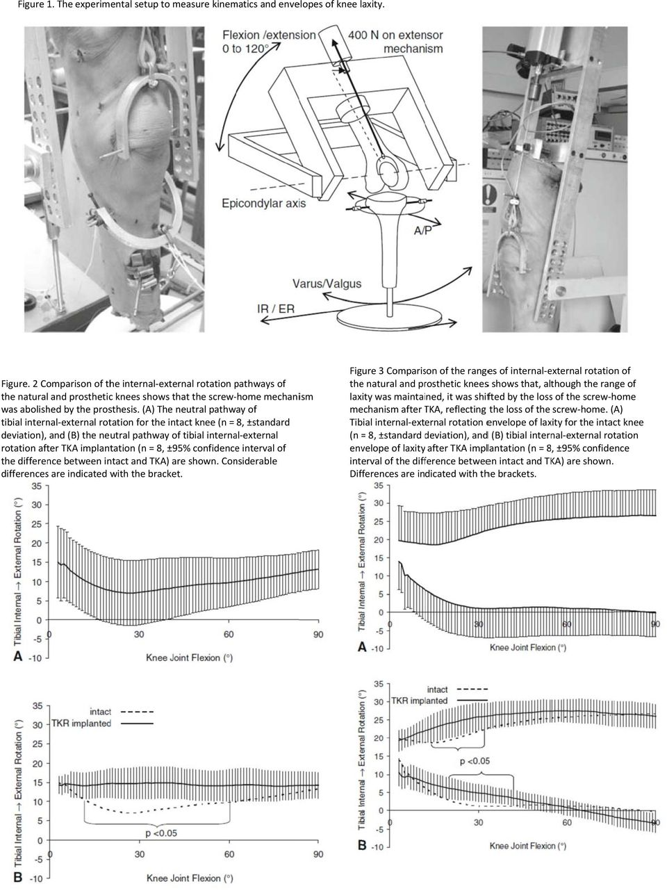 (A) The tibial internal-external rotation for the intact knee (n = 8, ±standard deviation), and (B) the neutral pathway of tibial internal-external rotation after TKA implantation (n = 8, ±95%