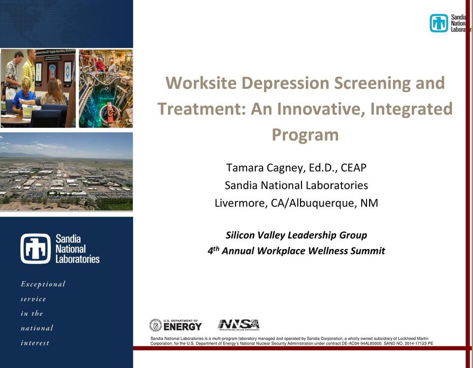pression Screening and Treatment: An Innovative, Integrated Program Tamara Cagney, Ed.D.