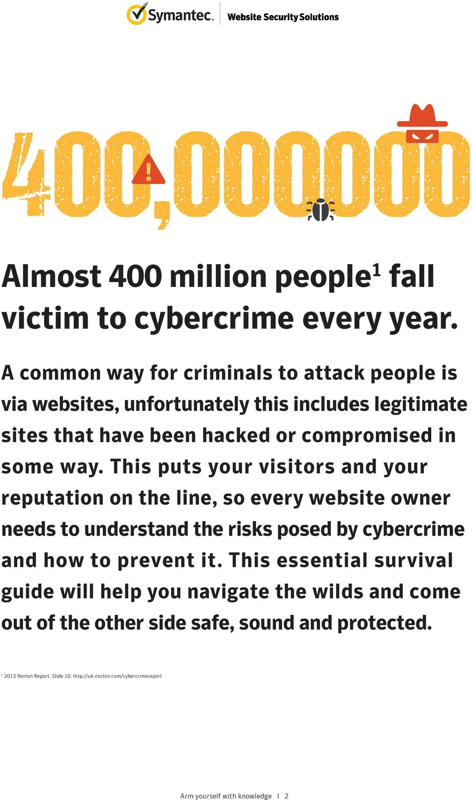 way. This puts your visitors and your reputation on the line, so every website owner needs to understand the risks posed by cybercrime and how to