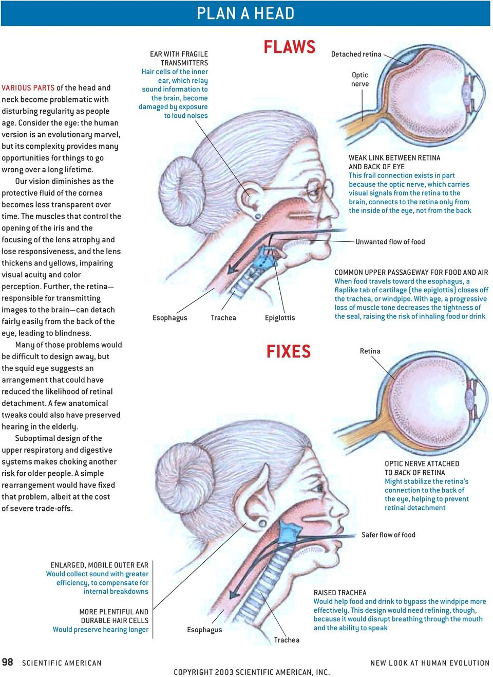 Our vision diminishes as the protective fluid of the cornea becomes less transparent over time.