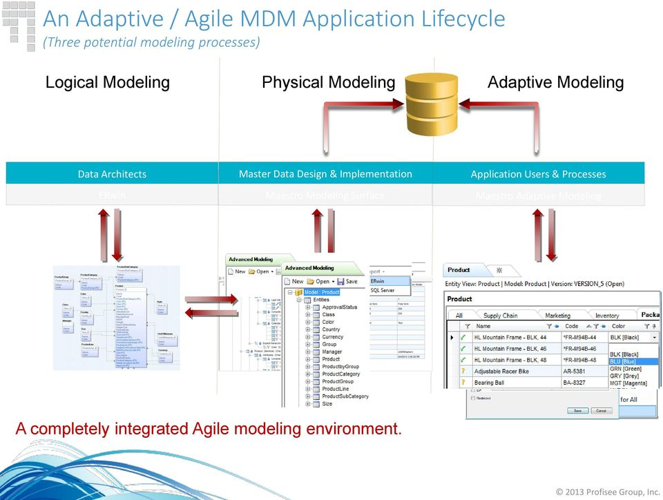 Master Data Design & Implementation Application Users & Processes ERwin Maestro