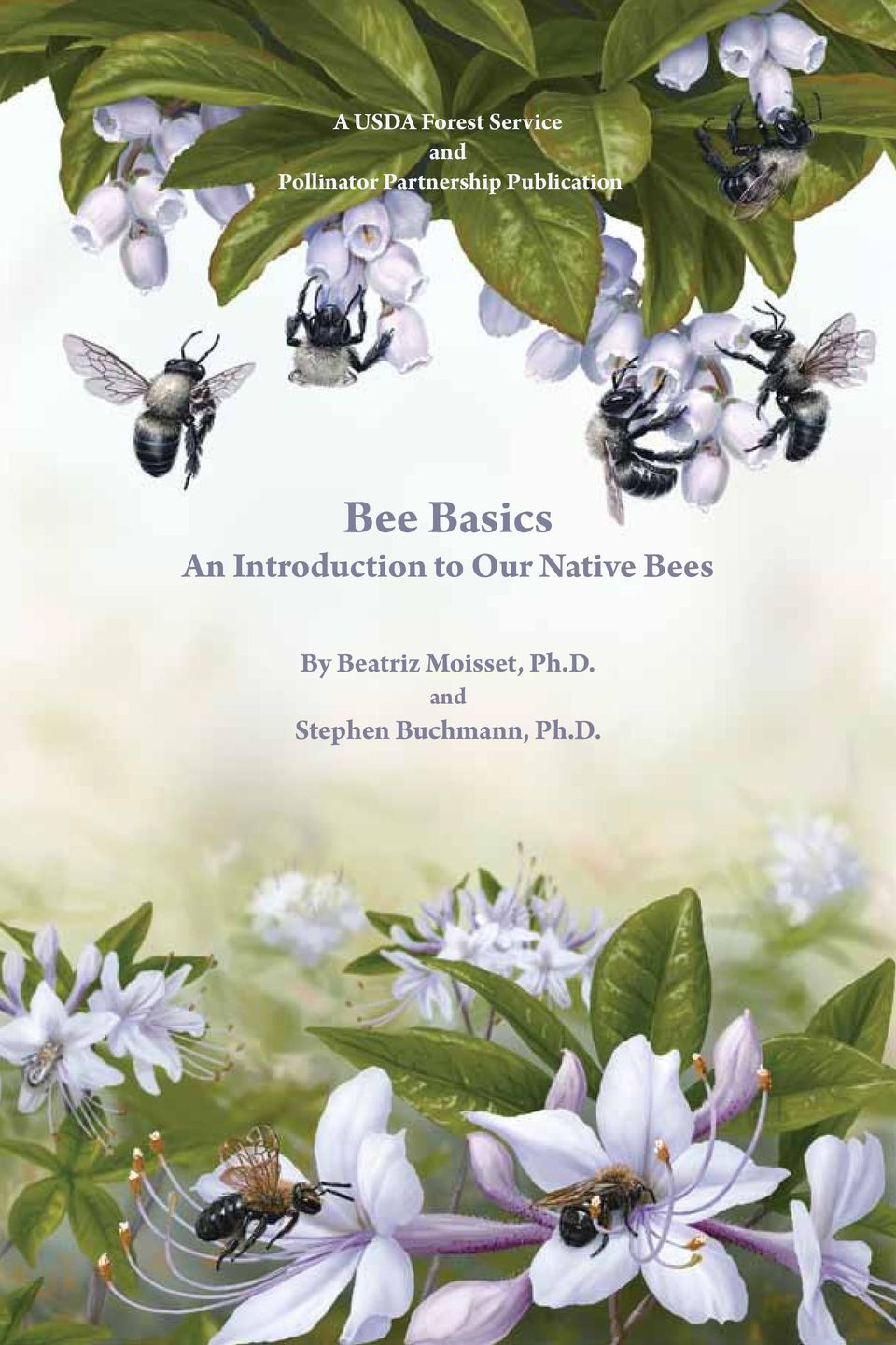 Introduction to Our Native Bees By