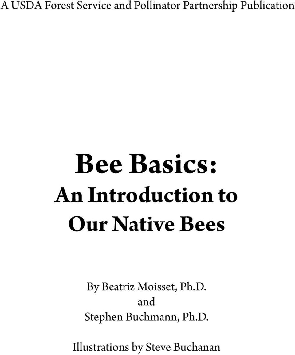 Native Bees By Beatriz Moisset, Ph.D.