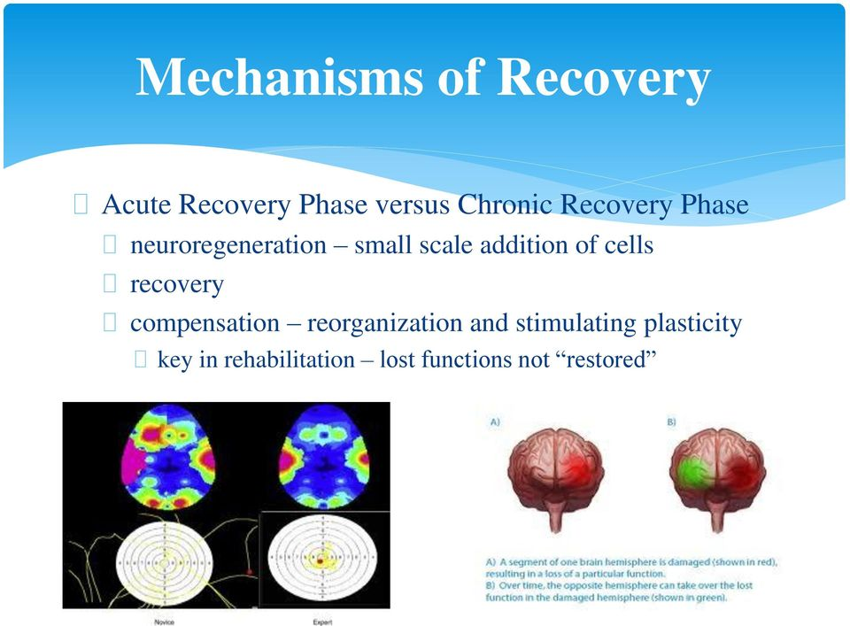 cells recovery compensation reorganization and stimulating
