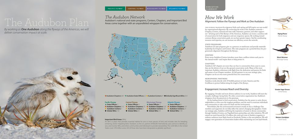 How We Work Alignment: Follow the Flyways and Work as One Audubon the flyways traveled by migratory birds each spring and fall inspire our new model for organizational alignment.