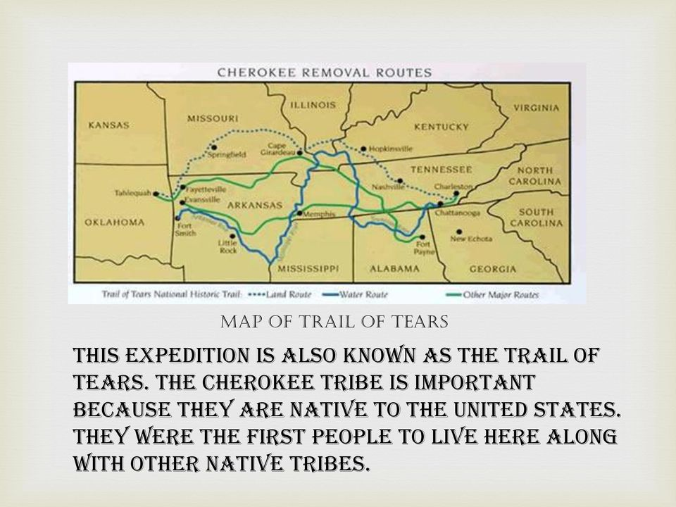 The Cherokee tribe is important because they are native