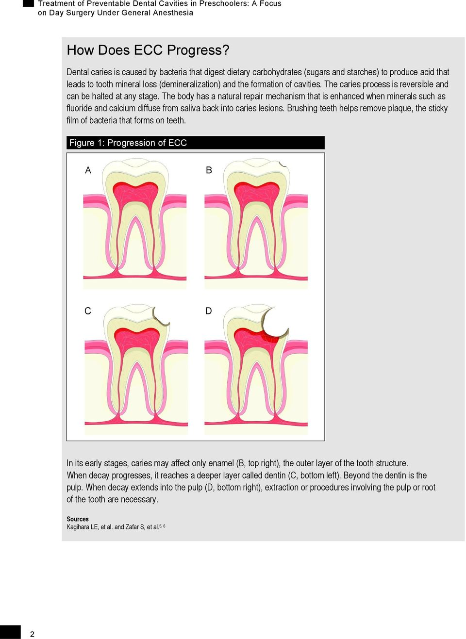 The caries process is reversible and can be halted at any stage.