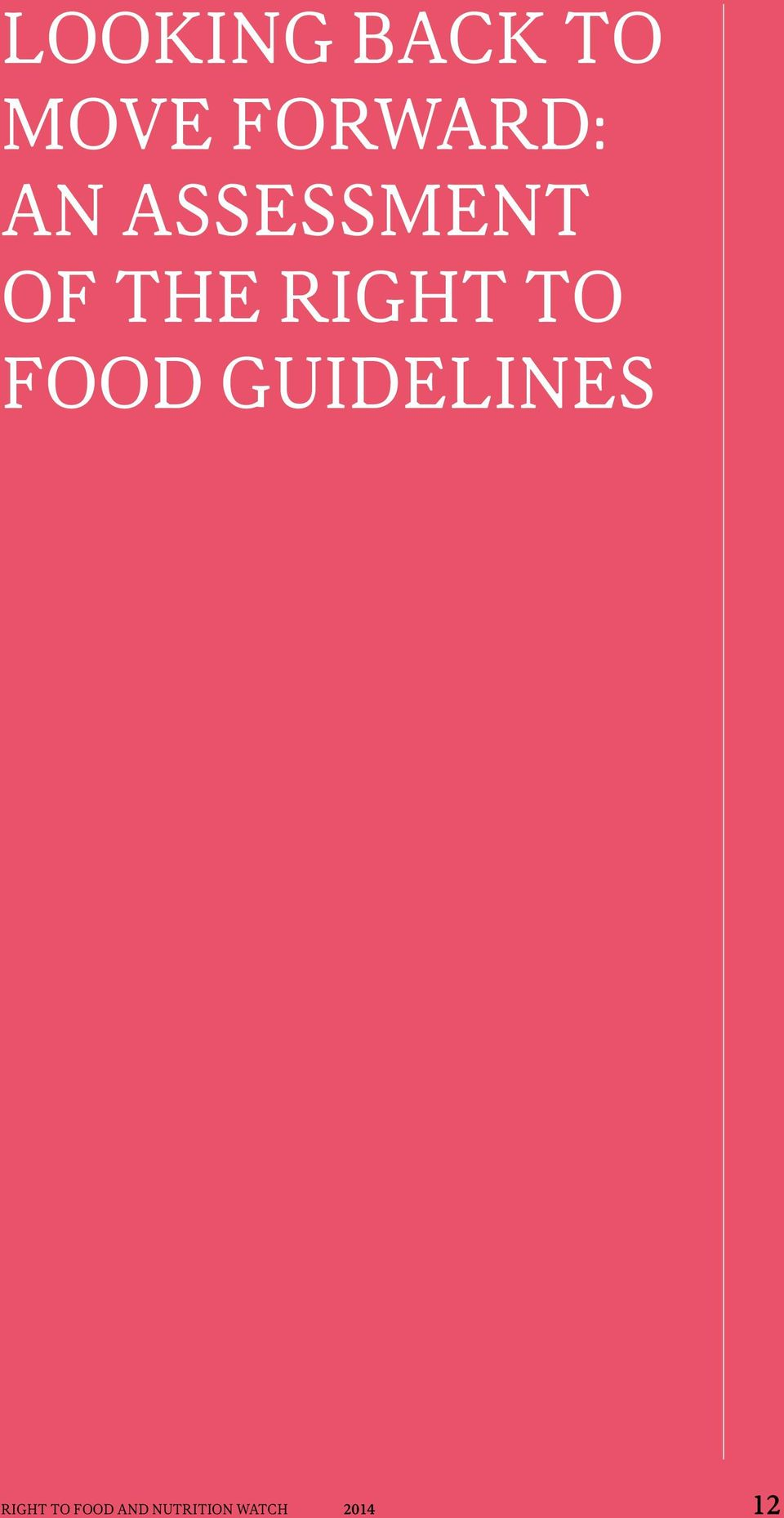 Food Guidelines Right to Food