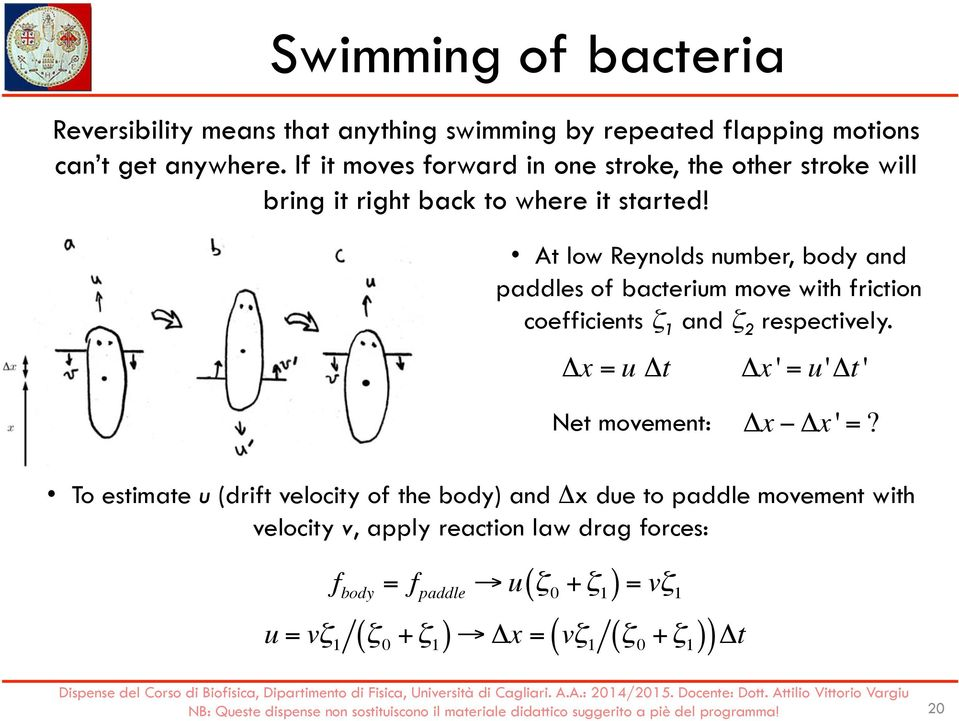 At low Reynolds number, body and paddles of bacterium move with friction coefficients ζ 1 and ζ 2 respectively.
