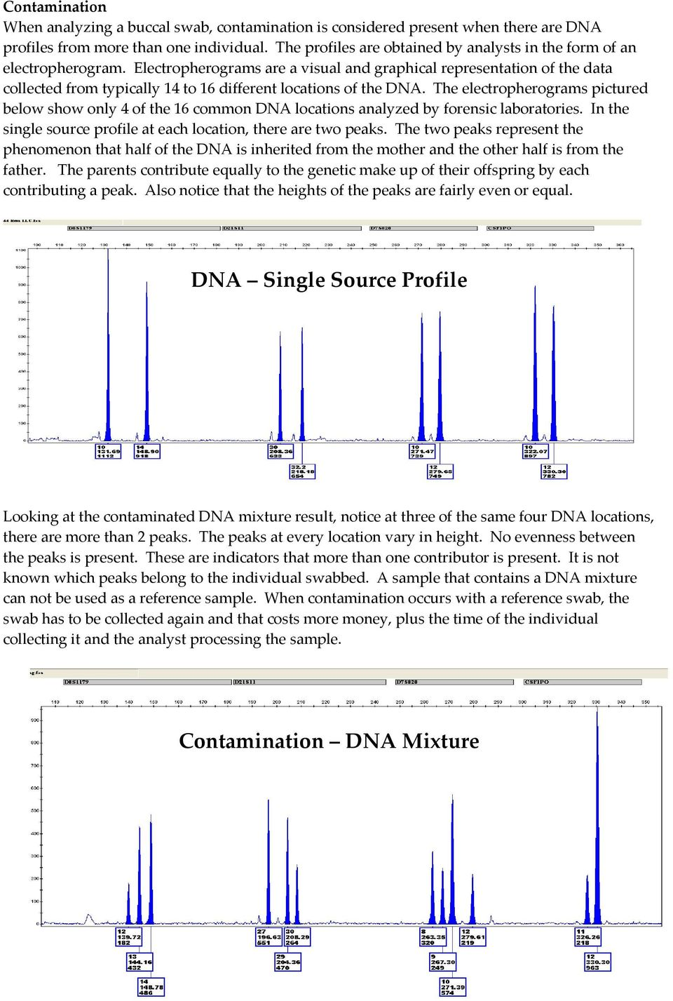 Electropherograms are a visual and graphical representation of the data collected from typically 14 to 16 different locations of the DNA.