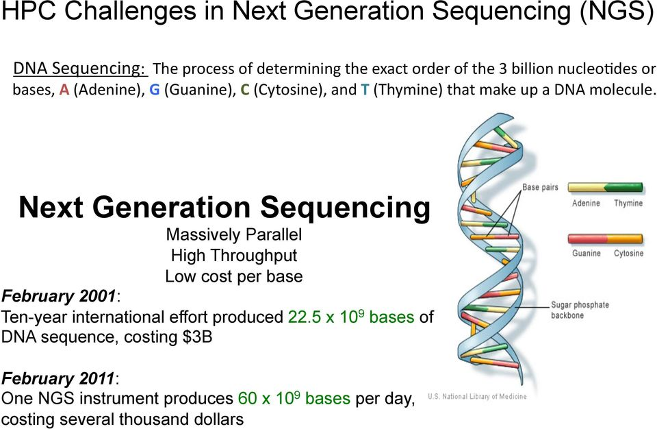 Next Generation Sequencing Massively Parallel High Throughput Low cost per base February 2001: Ten-year international effort