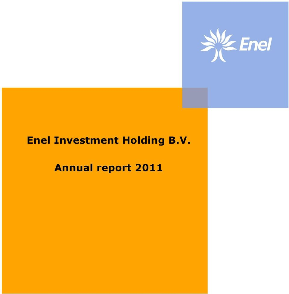 Enel Investment Holding B.V. Annual report PDF