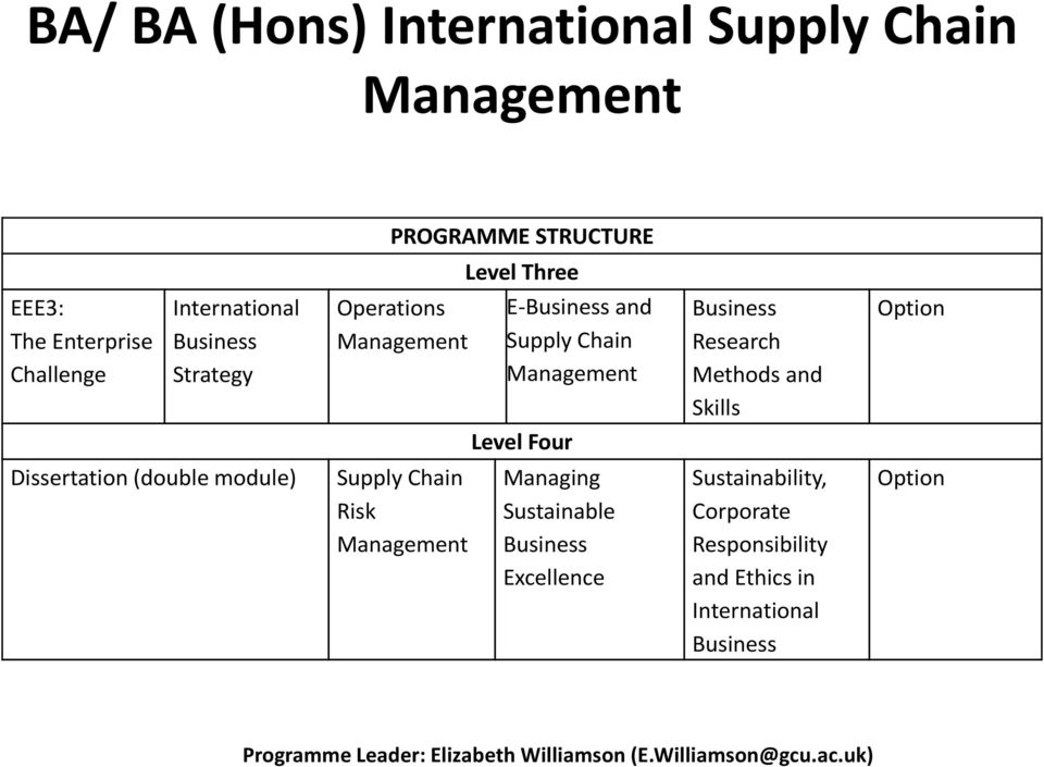 Dissertation (double module) Supply Chain Risk Managing Sustainable Excellence Sustainability, Corporate