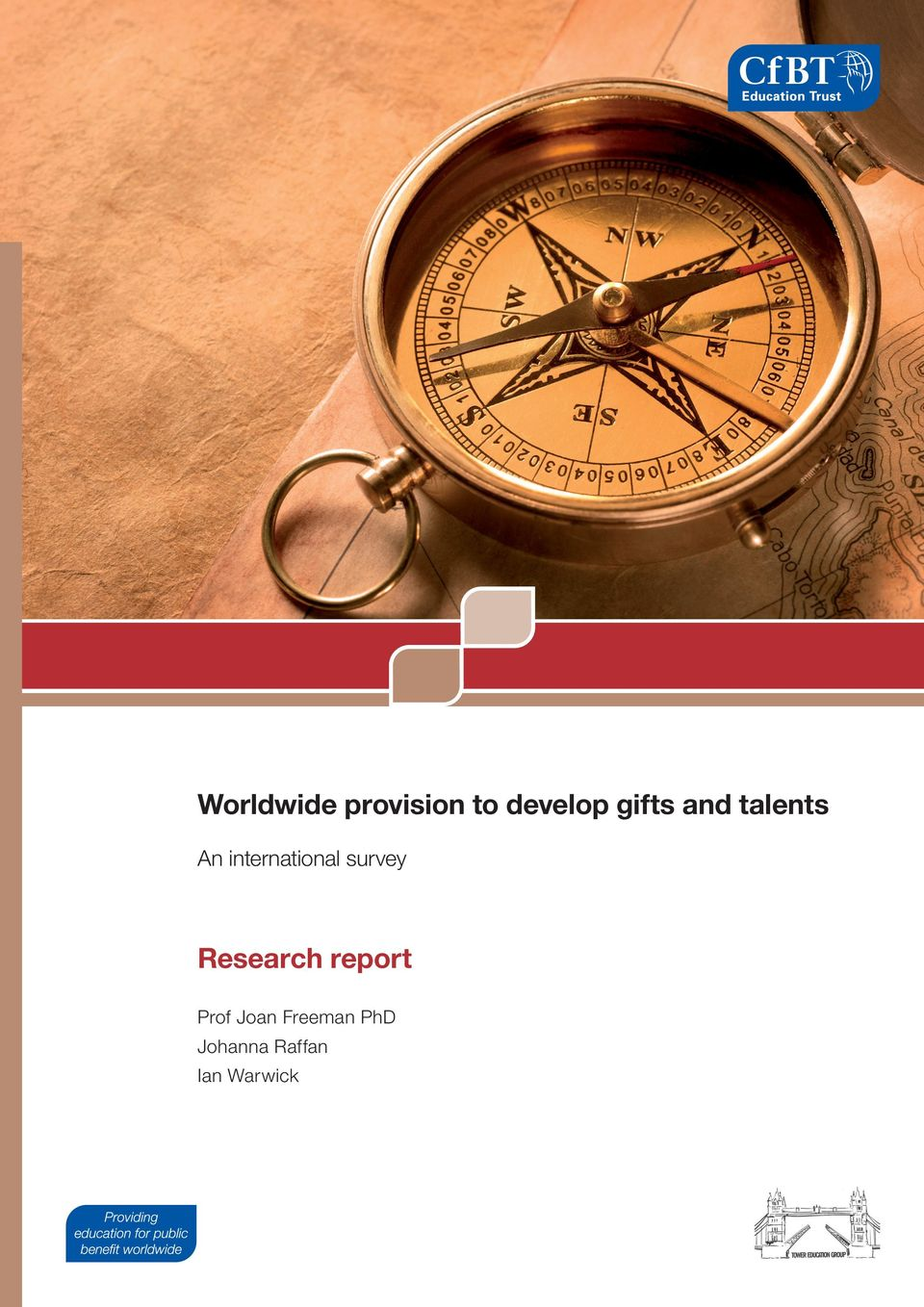 international survey Research report
