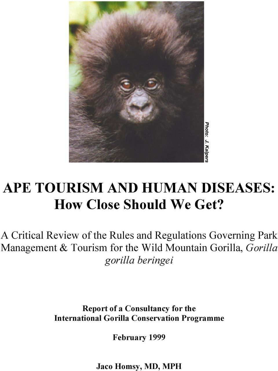 Tourism for the Wild Mountain Gorilla, Gorilla gorilla beringei Report of a