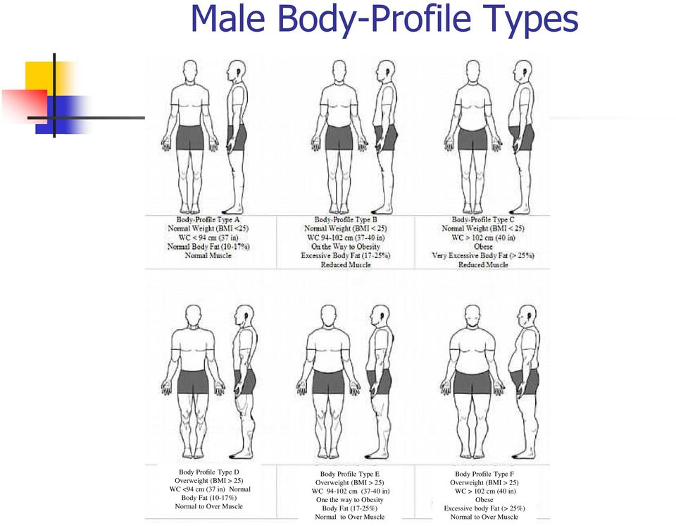 cm (37-40 in) One the way to Obesity Body Fat (17-25%) Normal to Over Muscle Body Profile
