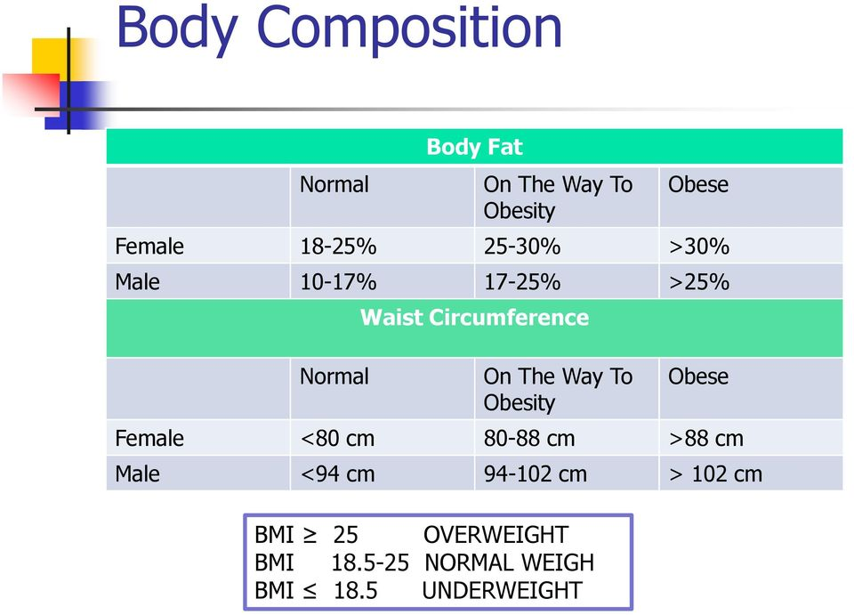 The Way To Obesity Obese Female <80 cm 80-88 cm >88 cm Male <94 cm