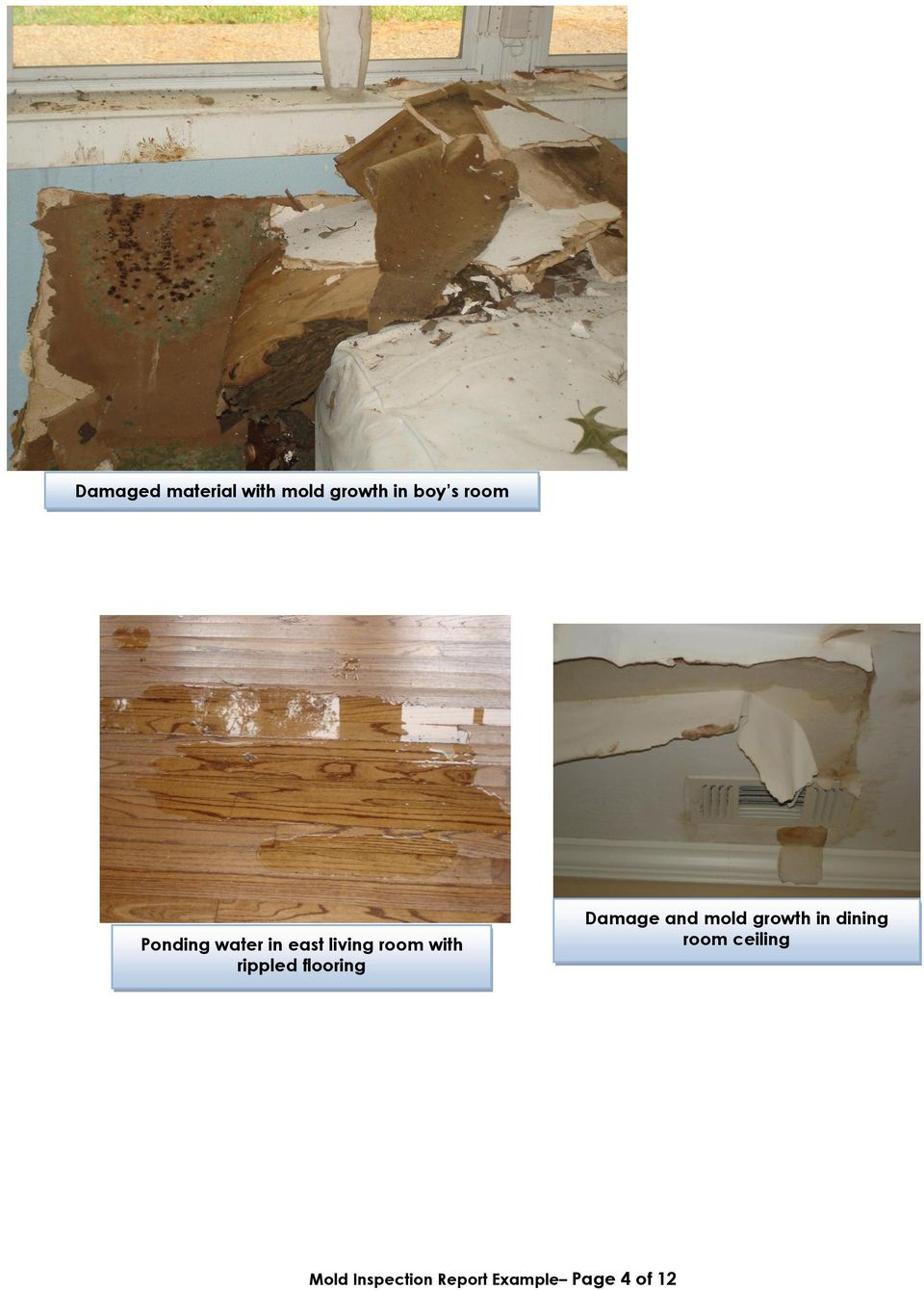 flooring Damage and mold growth in dining room