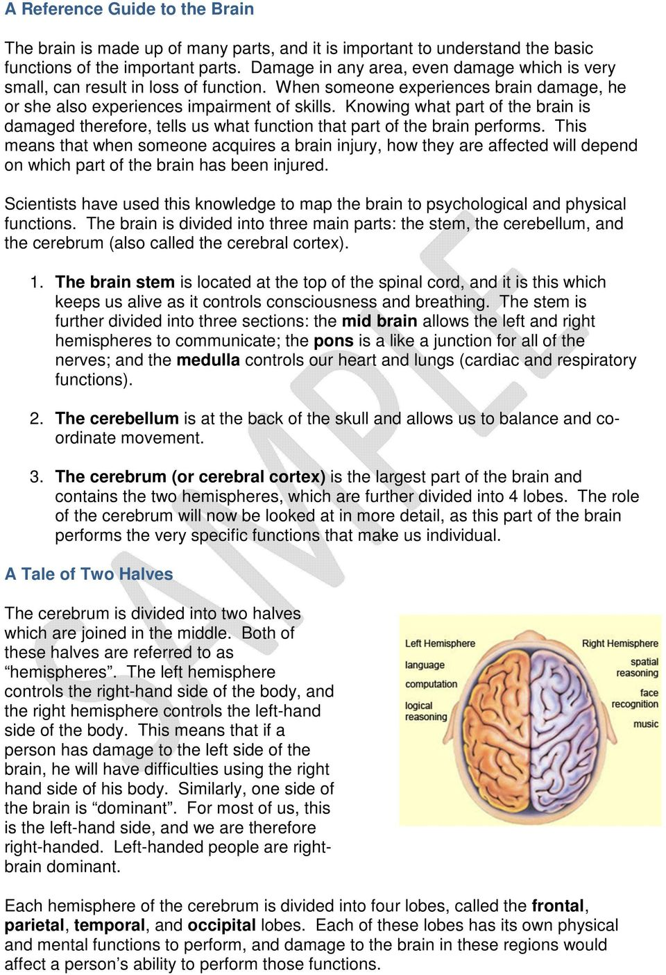 Knowing what part of the brain is damaged therefore, tells us what function that part of the brain performs.