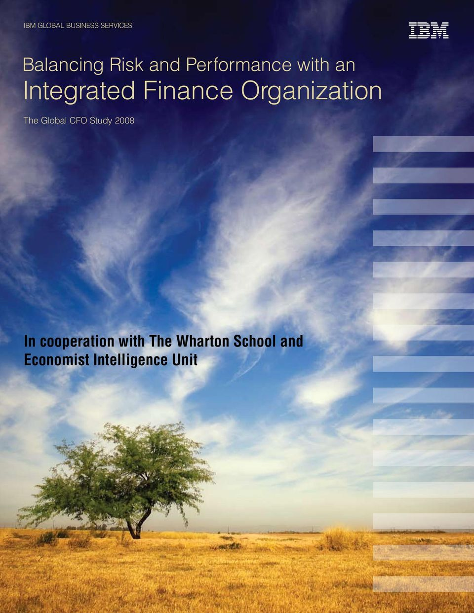 Organization The Global CFO Study 2008 In