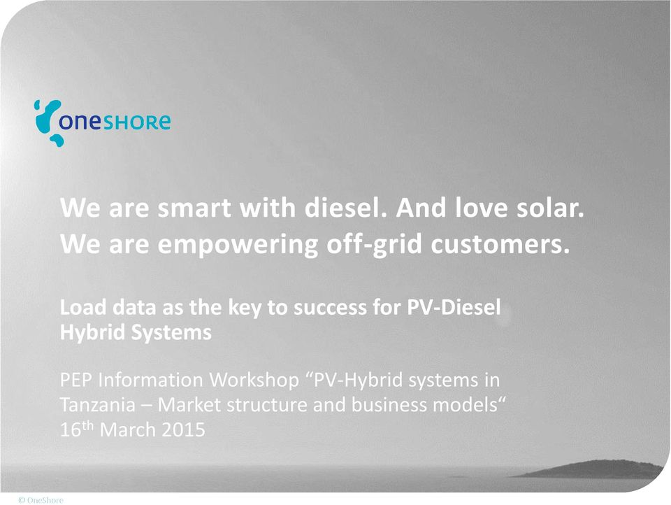 Load data as the key to success for PV-Diesel Hybrid Systems