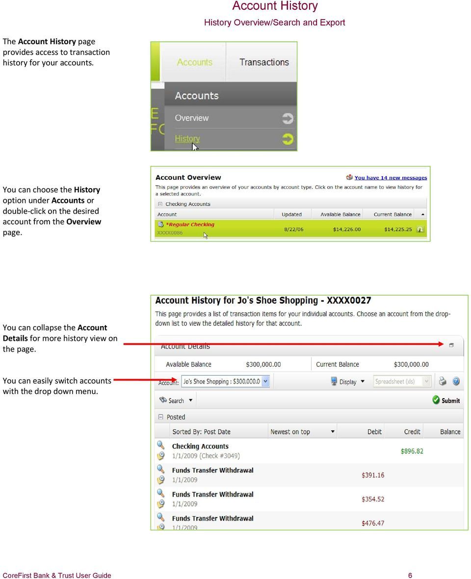 You can choose the History option under Accounts or double-click on the desired account from the