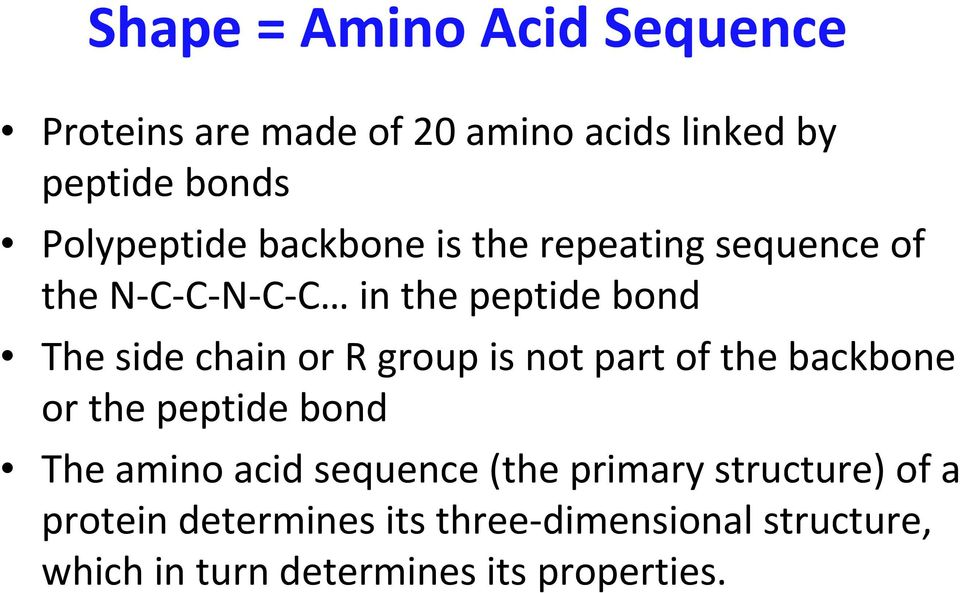chain or R group is not part of the backbone or the peptide bond The amino acid sequence (the