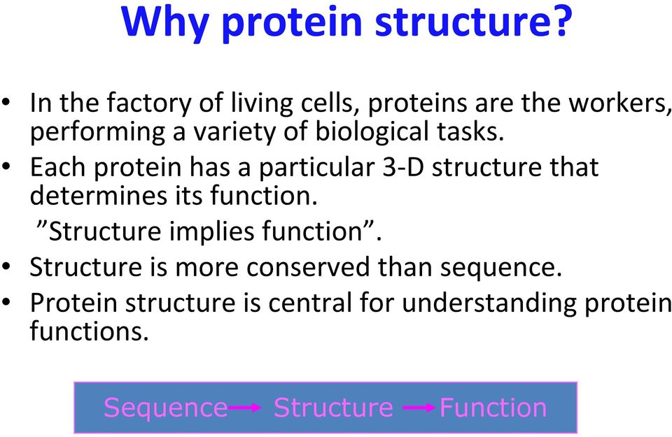 biological tasks. Each protein has a particular 3 D structure that determines its function.