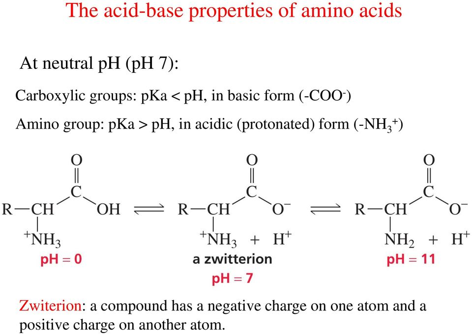 pka > ph, in acidic (protonated) form (-NH 3+ ) Zwiterion: a