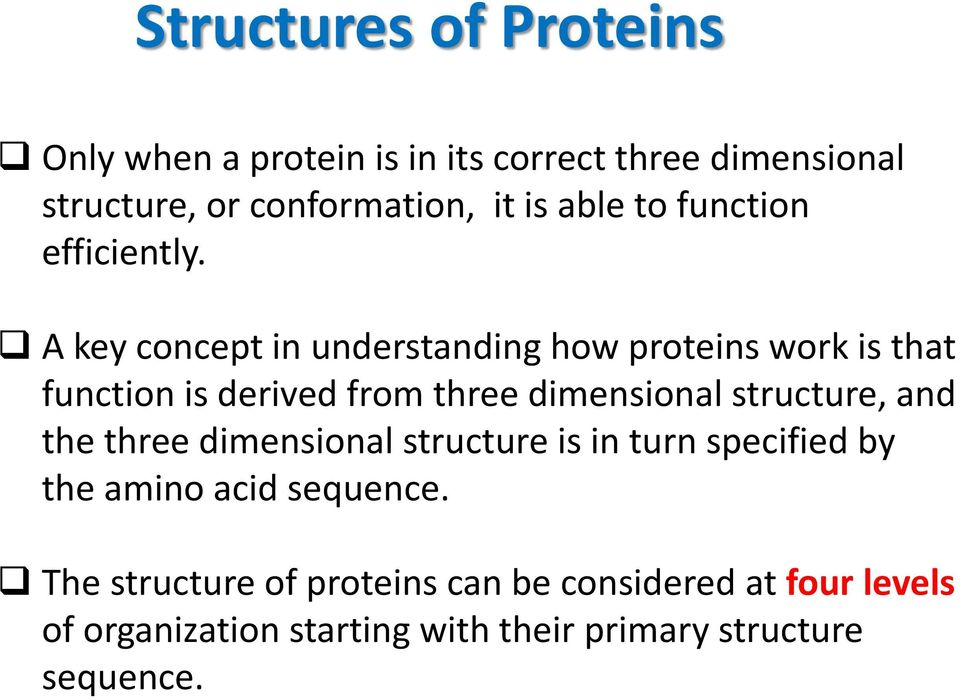 A key concept in understanding how proteins work is that function is derived from three dimensional structure, and