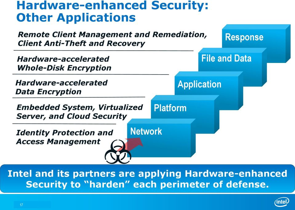 Application Embedded System, Virtualized Server, and Cloud Security Identity Protection and Access Management