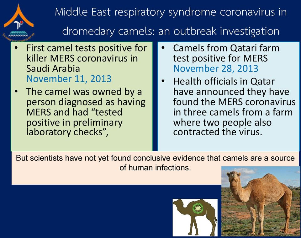 from Qatari farm test positive for MERS November 28, 2013 Health officials in Qatar have announced they have found the MERS coronavirus in three camels